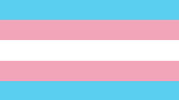 Bandeira orgulho trans