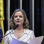 Gleisi: desgoverno Bolsonaro pratica a 'ideologia do desmonte'