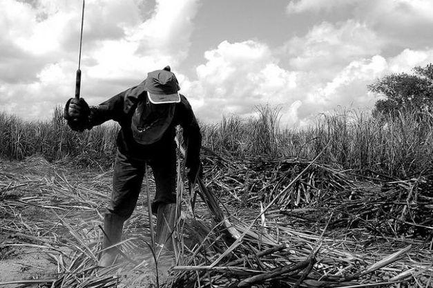 oit diz que portaria sobre trabalho escravo podera provocar retrocessos  - Divulgada a Lista Suja do trabalho escravo